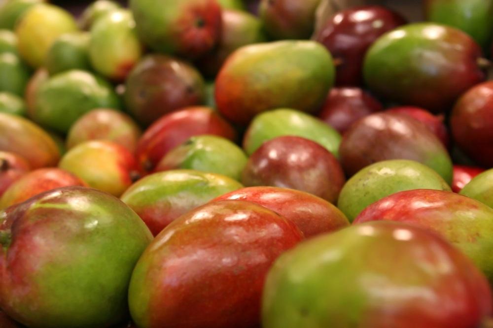 stockvault-mangoes193915.jpg
